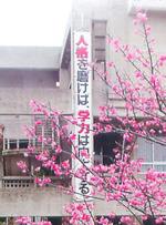 Kaihoukoukou01